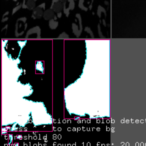 A screen capture of a posterized image of a person with purple box around certain features and some text related to image classification